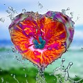 Love Makes A Splash by Rachel Hannah