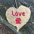 Love by Nobu Nihira