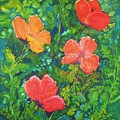 Love Those Poppies by Deva Claridge