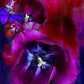 Love Tulips by Carol Cavalaris