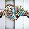Love Wins/galle by Patrick Osborne