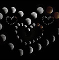 Love You To The Moon And Back by Betsy Knapp