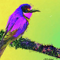 Lovely Bird by MS  Fineart Creations