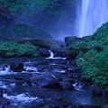 Lovely Latourell Falls by Teresa Herlinger