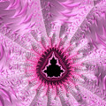Lovely Pink Fractal Art by Matthias Hauser