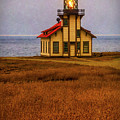 Lovely Point Cabrillo Light Station by Garry Gay