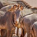 Lovely Stripes  7589 by Karen Celella