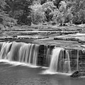 Lover Cataract Falls Black And White by Adam Jewell