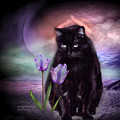 Loving My Kitty by Carol Cavalaris