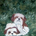 Loving Shih Tzu by Tammy Brown