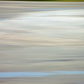 Low Country Coastal Blur by Suzanne Gaff