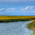Low Country Vista by E R Smith