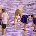 Low Tide Exploration by Fran Rittenhouse-McLean