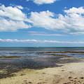 Low Tide In Paradise - Key West by Bob Slitzan