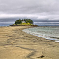 Low Tide In Popham Beach Maine by Tammy Wetzel