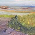 Low Tide by Michael Helfen