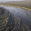 Low Tide Morning by Elizabeth Eldridge