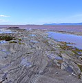 Low Tide On Saint Lawrence River by Cristina Stefan