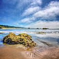 Low Tide On The Pacific Coast by Debra and Dave Vanderlaan