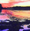 Low Tide On The Penobscot River by William Tremble