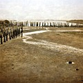 Low Tide Oregon Coast  by Michelle Calkins