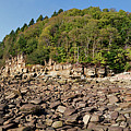 Low Tide Panorama by Noel Baebler