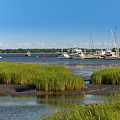 Lowcountry Blue Skies by Dale Powell
