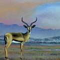Lowell's Gazelle by Sidney Vaughn