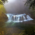 Lower Lewis Falls Foggy Morning by David Gn