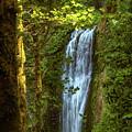 Lower Multanomah Falls, Oregon by Aashish Vaidya