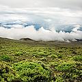 Lower Slopes Of Haleakala by Charmian Vistaunet