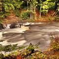 Lower Tahquamenon Falls 1 by Michael Peychich