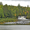 Lower Tahquamenon Falls 4 by Michael Peychich
