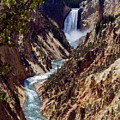 Lower Yellowstone Falls And River by Sally Weigand