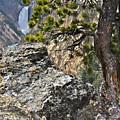 Lower Yellowstone Falls by Daryl L Hunter