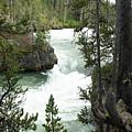 Lower Yellowstone Falls by Linda Kerkau