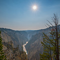 Lower Yellowstone Falls  by Michael Ver Sprill
