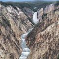 Lower Yellowstone Falls by Richard Sandford