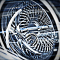 Lowrider Wheel Illusions 1 by Walter Herrit