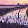 Loxahatchee Sunset by Donna Walsh