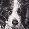 Loyal Companion by Elena Kolotusha