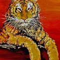 Lsu Tiger by Stephen Broussard