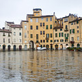 Lucca by Andre Goncalves