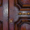 Lucca Door by John Daly