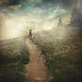 Lucid Dream by Zapista