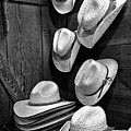 Luckenbach Hats Black And White by Judy Vincent