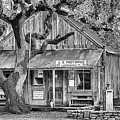 Luckenbach Texas Black And White by JC Findley