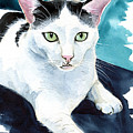 Lucky Elvis - Cat Portrait by Dora Hathazi Mendes