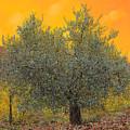 L'ulivo Tra Le Vigne by Guido Borelli