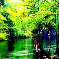 Lumber River II by RJ Walker